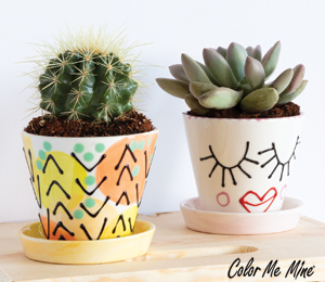 Pittsburgh Cute Planters